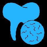 008-tooth.psd